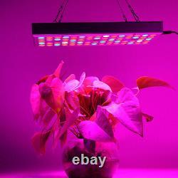 1000W LED Plant Grow Light UV Full Spectrum For Hydroponic Indoor Veg Plant Lamp