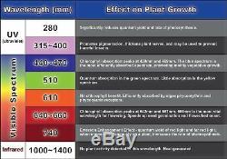 2000W LED Grow Light Panel Full Spectrum Lamp for Plants Hydroponics Veg Flower