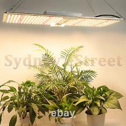 2000W LED Grow Light Samsung LM301B Full Spectrum Hydroponics Indoor Plants Veg