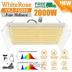 2000W LED Grow Light Sunlike Full Spectrum Growing Lamp for Seeding Veg & Bloom