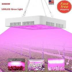 5000W LED Grow Light Full Spectrum For Hydroponic Indoor Plant Flower Veg WithFan