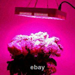 5000W LED Grow Light Full Spectrum For Indoor Medical Plant Flower Veg Lamp IP65