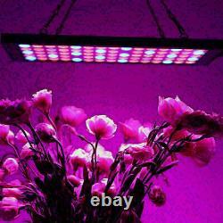 5000W LED Grow Light IR UV Full Spectrum For Indoor Hydroponic Plant Flowers Veg