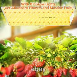 Bloom Plus 2500W LED Grow Light Sunlike Full Spectrum All Stage Plant Veg Bloom