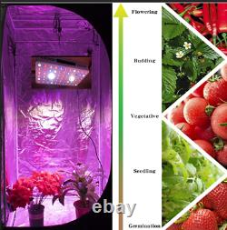 CREE COB 1000W LED Grow Light Full Spectrum with VEG/Bloom Switch for Greenhouse