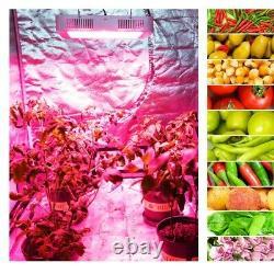 Carambola 6000W LED Grow Light Full Spectrum RED LED 384LED for Veg Flower Bloom