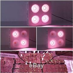 Full Spectrum 800W COB LED Grow Light for Indoor Plant Veg Flower Growth Lamp
