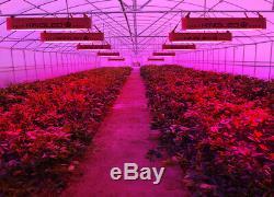 KING 1500W Full Spectrum LED Grow Light Bloom Veg Switch for Plants