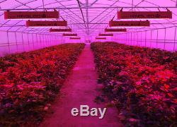 KING 2000W LED Grow Light Full Spectrum Veg Flower Indoor Plant Lamp Panel