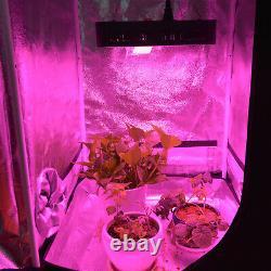 LED Grow Light 3000W 2000W 1800W 1500W 1000W Full Spectrum Veg Flower Hydroponic