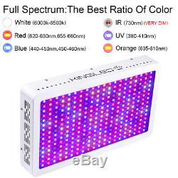 New 3000W Plus Full Spectrum LED Grow Light Hydroponics for Indoor Veg Plants