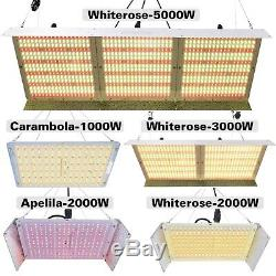 1000w 2000w 3000w 5000w Led Grow Light Sunlike Full Spectrum Veg Bloom Toutes Les Étapes