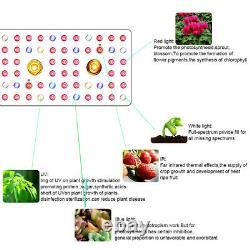 1000w Led Grow Light Cree Cob Plein Spectre Avec Commutateur Veg/bloom Pour Serre Chaude