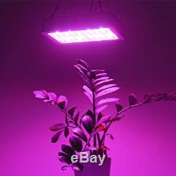 2 X 1500w Led Grow Light Lamp Double Chip Full Spectrum Indoor Plant Médical Veg