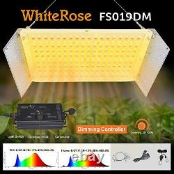 2000w Dimming Control Led Grow Light Full Spectrum Seeding Veg Bloom Dual Switch