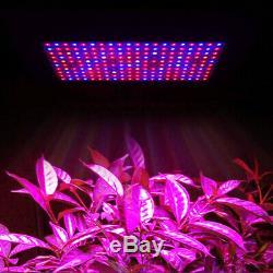 2000w Led Grow Light Full Spectrum Usine Lampe Fleur Veg À Effet De Serre D'intérieur Des États-unis
