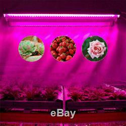 2000w Led Grow Light High Output T5 Intégré Full Spectrum Croissance Veg Lamp