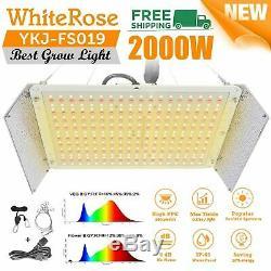 2000w Led Grow Light Kit Spectre Complet Pour Tous D'intérieur Plante Veg Fleur Ip65