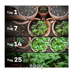 2500w Cree Cob Led Grow Light Veg/bloom For Indoor Hydroponic Greenhouse Plants