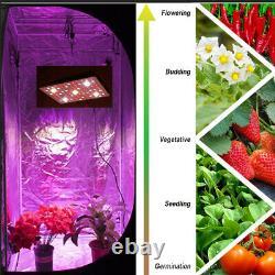 2500w Cree Cob Led Grow Veg/bloom Léger Pour Les Plantes De Serre Hydroponiques À L'intérieur