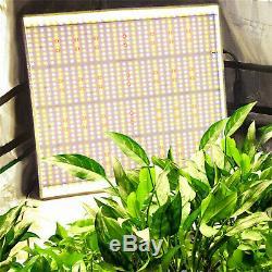 2pcs Marshydro Ts 3000w Led Grow Lumière Blanche Full Spectrum Grossir Veg Bloom Intérieur