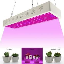 3000w Full Spectrum Hydro Led Faire Pousser Des Plantes À Usage Médical Lumière Veg Intérieur Floraison Bg