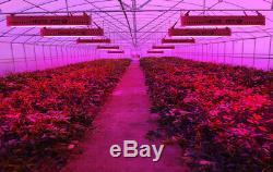 3000w Full Spectrum Led Grow Light Hydroponique Pour Les Plantes D'intérieur Veg Us Stock