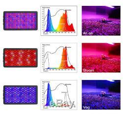 3000w Led Grow Light Full Spectrum Veg & Bloom Pour Rupture De Stock Médicale Commercial
