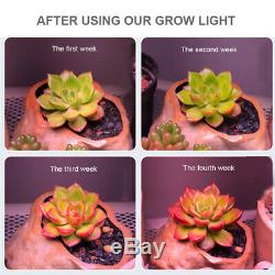 4 × 300w Watt Cob Led Grow Light Full Spectrum Plantes Lampe Hydroponique Veg Fleurs