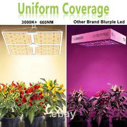 4000w Led Grow Light Full Spectrum Lampe Lm301b Pour Les Plantes Hydroponique Veg Fleurs