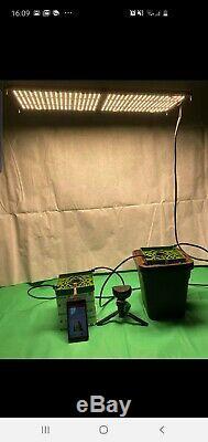 6 X Quantum Lumières Board Full Spectrum Led Grow Light Veg Flower Remplacer Hps Hid