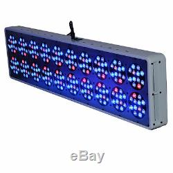 720w Dimmable Led Grow Light Panel Intérieur Usine Full Spectrum Hydro Lampe Veg