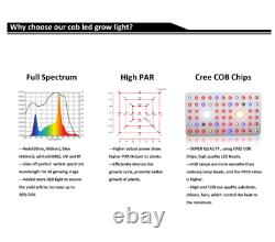 Cree Cob 1000w Led Grow Light Full Spectrum Avec Veg / Bloom Commutateur Pour Effet De Serre