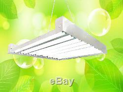 Durolux T5 Ho Élèvent La Lumière 2 Pi 16 Ampoules Fluorescentes Dl8216 Hydroponique Bloom Veg