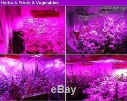 Full Spectrum Réflecteur De Led Cob Élèvent La Lumière De La Lampe Hydro Plantes Veg Fleurs