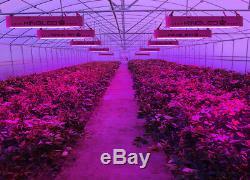 King 1200w Led Grow Light Full Spectrum Hydroponique Veg Usine De Fleur Lampe D'intérieur