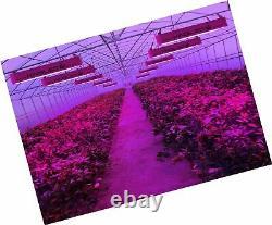 King Plus 1200w Led Grow Light Full Spectrum Pour Greenhouse Indoor Plant Veg