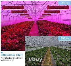 King Plus 600w Led Grow Light Full Spectrum For Indoor Plants Veg And Flower New