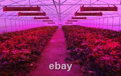 Kingplus 3000w Led Grow Light Full Spectrum Veg Flower Indoor Plant Lamp Panel