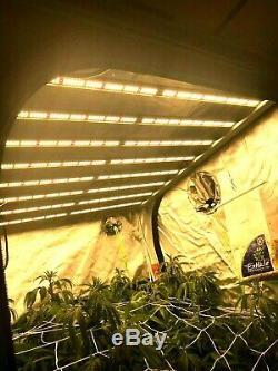 Led 660w Grossir Haute Puissance Lumière Veg Et Ultimate Floraison