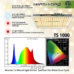 Mars Hydro Ts 600w 1000w 2000w 3000w Led Élèvent La Lumière Pour Les Plantes D'intérieur Veg Bloom