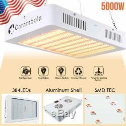 Pro 3000w 5000w 8000w Led Grow Light Sunlike Full Spectrum Pour Veg & Bloom Commutateur