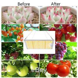 Spider Fermier 1000w Led Grow Light Samsungled Lm301b Veg Fleurs Plantes D'intérieur Aux États-unis