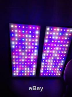 Viparspectra 900w Led Grow Light 12 Full Spectrum Band Veg Flower Lamp Commutateur